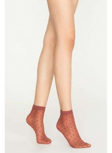 Penti Ant Soket Çorap Pembe
